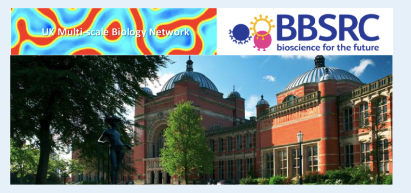 UK Multi-Scale Biology Network